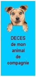 Deces animal pfi