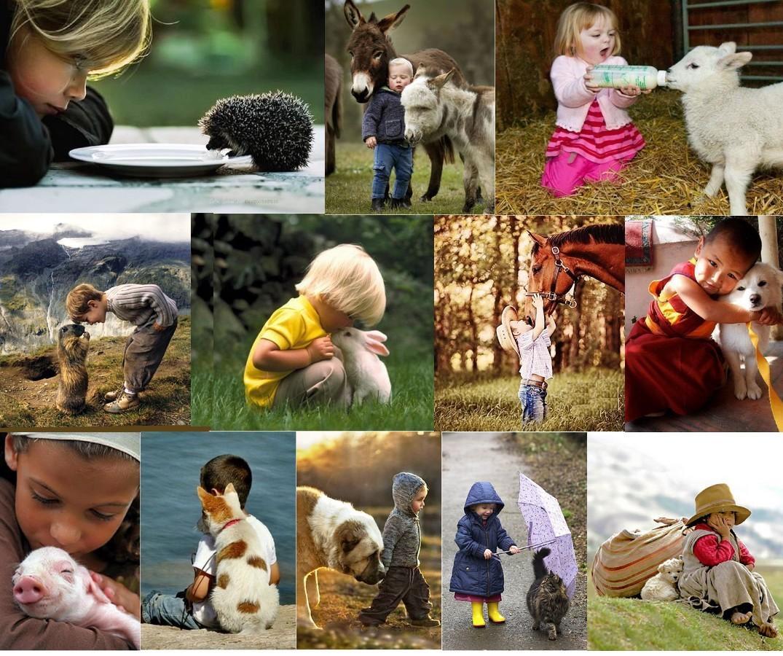 Les enfants et les animaux 1